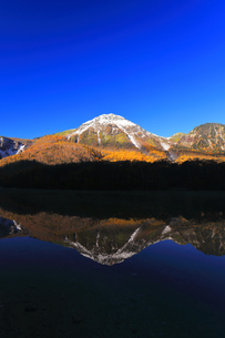 秋の上高地 大正池より紅葉と冠雪の焼岳の写真素材 [FYI04811261]