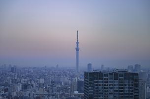 豊洲から望む早朝の都心と東京スカイツリー  の写真素材 [FYI04811266]