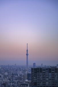 豊洲から望む早朝の都心と東京スカイツリーの写真素材 [FYI04811267]