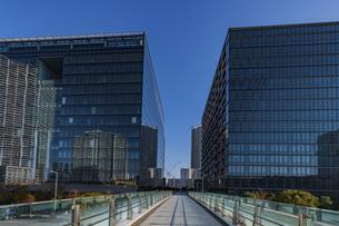豊洲のオフィス街の高層ビル  の写真素材 [FYI04811279]