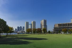 豊洲公園と晴海方面の高層マンションビル群とららぽーと豊洲    の写真素材 [FYI04811285]