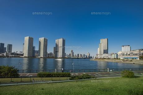 豊洲公園と晴海方面の高層マンションビル群  の写真素材 [FYI04811287]