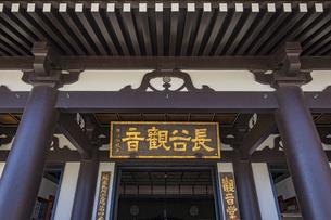 観音造立1300年を迎えた長谷寺の観音堂の写真素材 [FYI04811318]