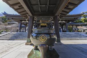 観音造立1300年を迎えた長谷寺の観音堂の写真素材 [FYI04811323]