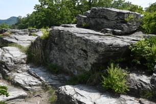 岩畳の写真素材 [FYI04811366]