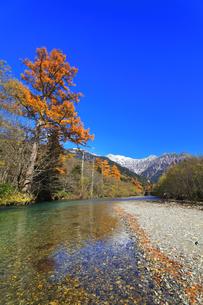 秋の上高地 梓川の清流に紅葉と冠雪の穂高連峰の写真素材 [FYI04811403]