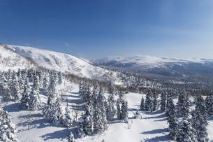 北海道 大雪山旭岳の冬の風景の写真素材 [FYI04811451]