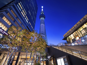 夕暮れの東京スカイツリータウンの写真素材 [FYI04811573]