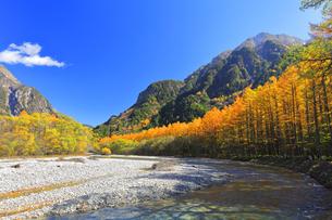 秋の上高地 梓川の清流に紅葉と六百山の写真素材 [FYI04811605]