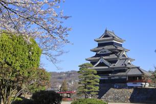 松本城公園の写真素材 [FYI04811676]