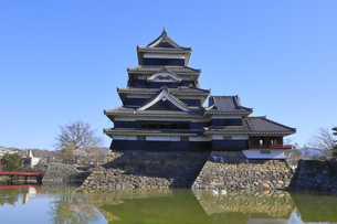 松本城公園の写真素材 [FYI04811682]