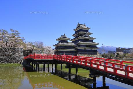 松本城公園の写真素材 [FYI04811694]
