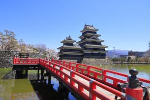 松本城公園の写真素材 [FYI04811696]