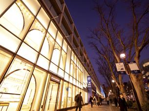 夕暮れの表参道 東京都の写真素材 [FYI04811710]