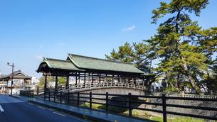 快晴の青空を背景に金刀比羅宮の鞘橋(香川県琴平町)の写真素材 [FYI04812186]