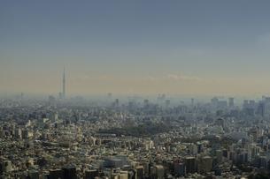 豊島区から望む都心の風景と東京スカイツリーの写真素材 [FYI04812426]