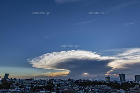 都心の空に広がるかなとこ雲の写真素材 [FYI04812443]