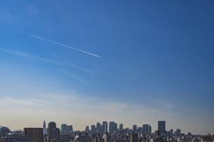 豊島区から望む新宿方面のビル群の写真素材 [FYI04812453]