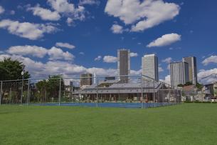 豊島区雑司が谷公園と東池袋の高層マンションとビル群の写真素材 [FYI04812469]