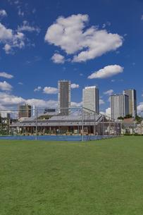 豊島区雑司が谷公園と東池袋の高層マンションとビル群の写真素材 [FYI04812470]