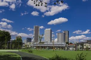 豊島区雑司が谷公園と東池袋の高層マンションとビル群の写真素材 [FYI04812471]