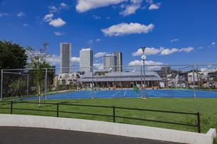 豊島区雑司が谷公園と東池袋の高層マンションとビル群の写真素材 [FYI04812475]