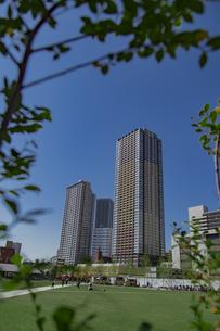 豊島区東池袋のイケ・サンパークと高層マンションとビル群の写真素材 [FYI04812487]