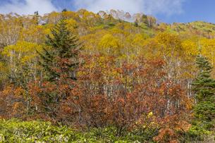 焼岳中腹から紅葉の風景の写真素材 [FYI04812804]