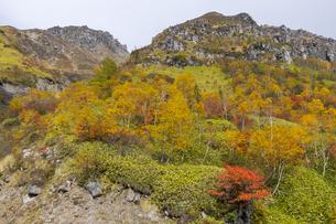 紅葉の焼岳中腹から頂上を眺めるの写真素材 [FYI04812824]