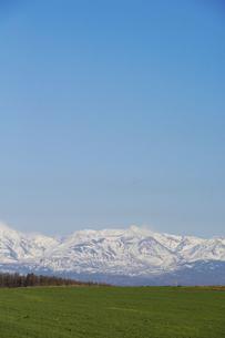 春の緑の牧草畑と残雪の山並み 十勝岳の写真素材 [FYI04812862]