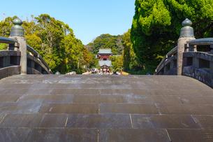 太鼓橋越しに見る鶴岡八幡宮本宮の写真素材 [FYI04813599]