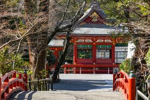 鶴岡八幡宮舞殿と赤い橋の写真素材 [FYI04813629]