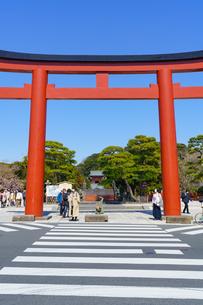鶴岡八幡宮三の鳥居と青空の写真素材 [FYI04813647]