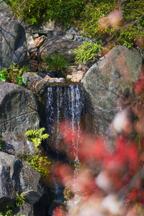 長谷寺の池の滝の写真素材 [FYI04813655]