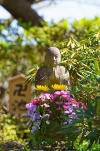 長谷寺卍池の石像の写真素材 [FYI04813656]
