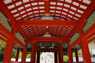 鶴岡八幡宮舞殿と大石段の写真素材 [FYI04813661]