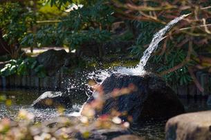 長谷寺の池の写真素材 [FYI04813667]