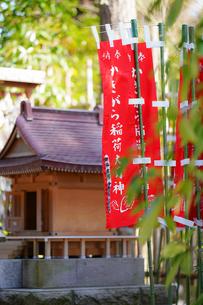 長谷寺のかきがら稲荷の写真素材 [FYI04813674]