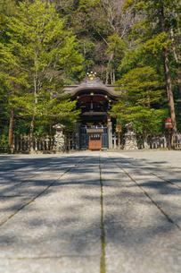 鶴岡八幡宮白旗神社の写真素材 [FYI04813689]