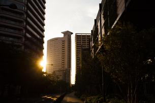 夜明けの武蔵小杉の町並みの写真素材 [FYI04813978]