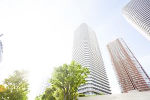 武蔵小杉の高層マンション群と新緑の写真素材 [FYI04814002]