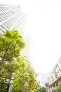 武蔵小杉の高層マンション群と新緑の写真素材 [FYI04814012]