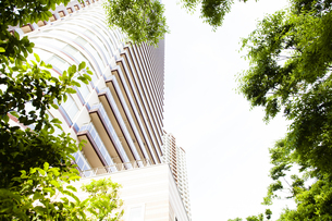 武蔵小杉の高層マンション群と新緑の写真素材 [FYI04814013]