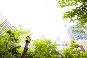 武蔵小杉の高層マンション群と新緑の写真素材 [FYI04814014]