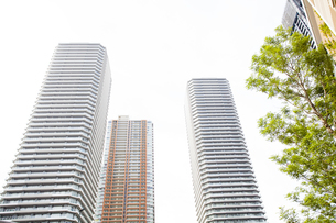 武蔵小杉の高層マンション群と新緑の写真素材 [FYI04814021]