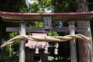大山神社の写真素材 [FYI04814142]