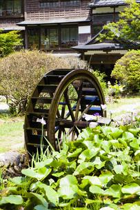 嵐渓荘の水車の写真素材 [FYI04814192]