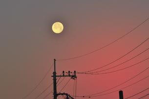 朝焼けに浮かぶ大きな月と電線の写真素材 [FYI04814415]