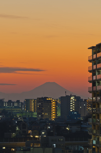 東京遠望 富士山暮色の写真素材 [FYI04814945]
