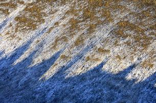 霜が降りた作物が植えられていない畑に朝日が当たり出来た色々な模様の光景の写真素材 [FYI04815081]
